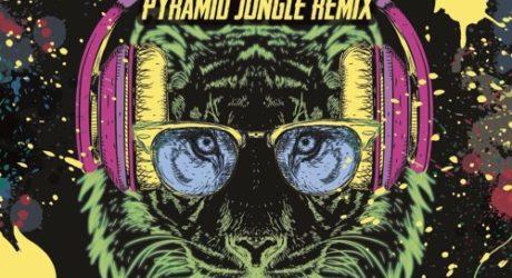 pyramid-jungle-garv