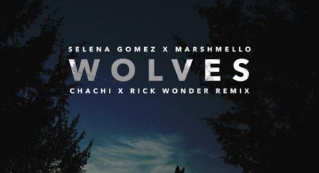wolves selena gomez download