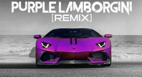 Skrillex Rick Ross Purple Lamborghini Mgglr X Woogie Remix