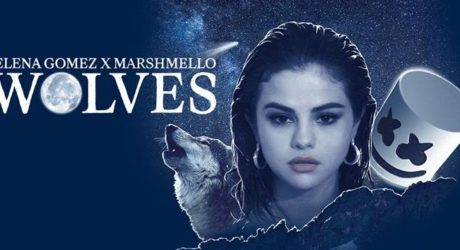 Selena Gomez & Marshmello – Wolves (B-Fix Remix)